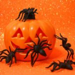 8 Creepy Bug Facts Accurate