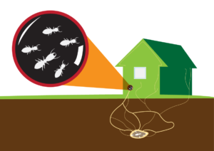 Subterranean Termite Control Treatment Methods