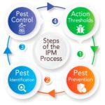 IPM Blog