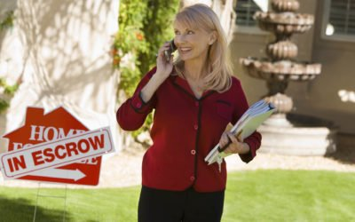 Top Realtor Rookie Mistakes: Preventable Termite-related Delays in Escrow
