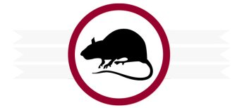 Rodent Control in Orange County