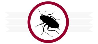 Pest Control in Orange County