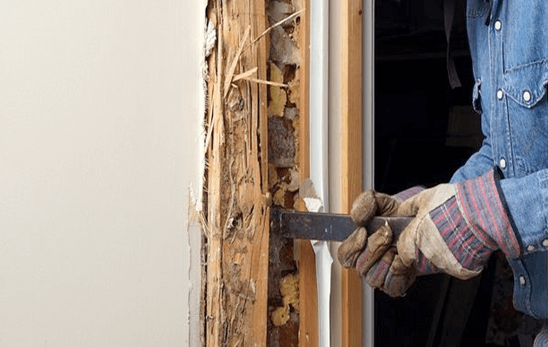 What is the Difference Between Section 1 and Section 2 Items in a Termite Report?
