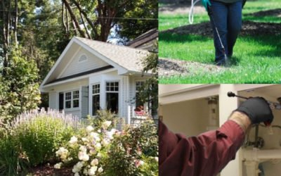 How Does Pest Control Affect the Environment?