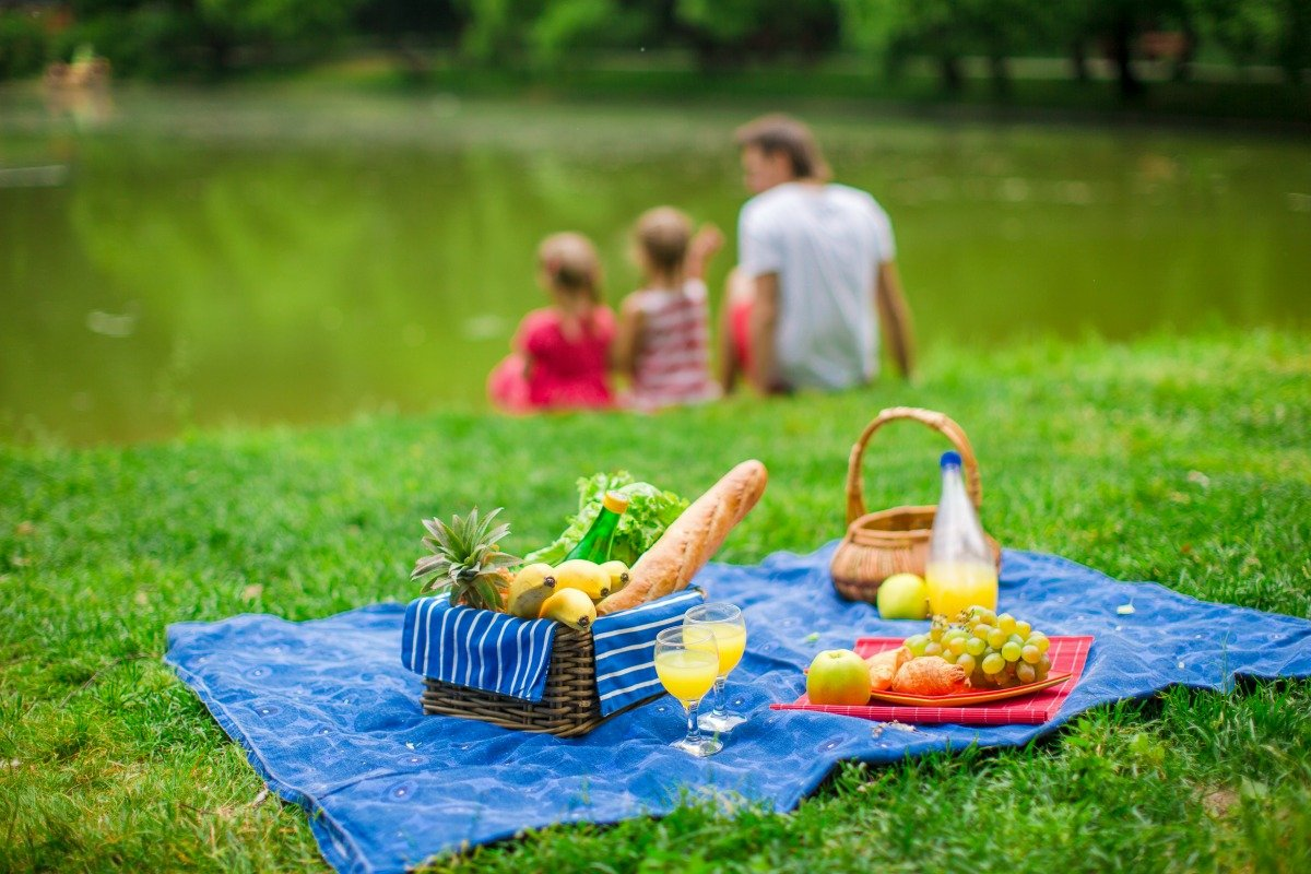 Top Picnic Foods that Attract Pests - Accurate Termite and ...